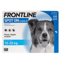 Spot On chien 10-20kg 6 pipettes