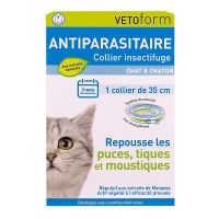 Collier insectifuge chat & chaton