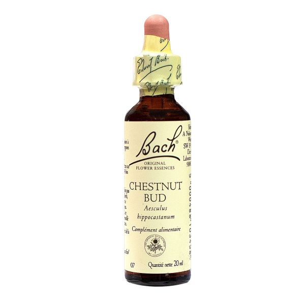 Bach chestnut bud n°07 20ml