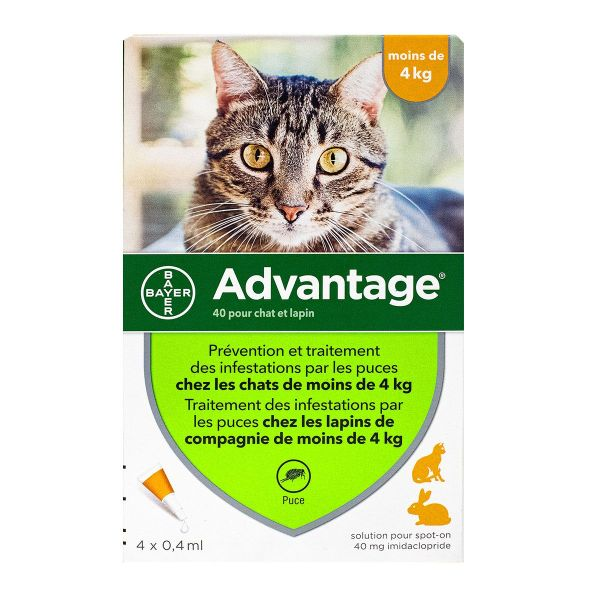 Advantage chats & lapins -4kg - 4 pipettes